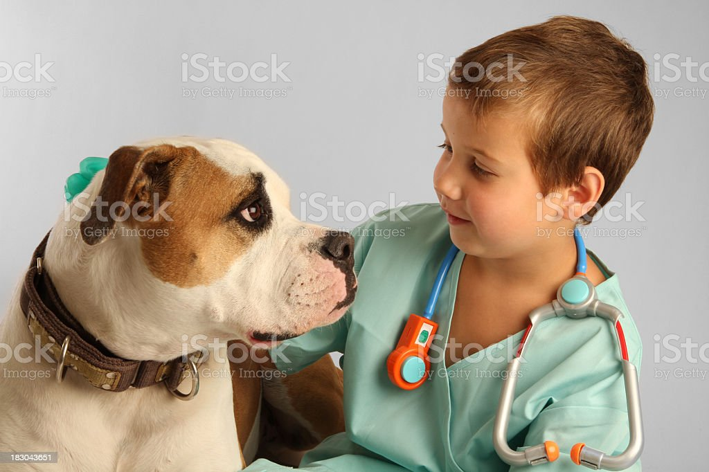 Young kid with vet attire and toy stethoscope petting a dog royalty-free stock photo
