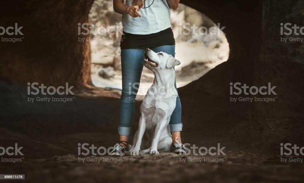 junge Labrador Retriever Hund Welpe sitzt zwischen den Beinen eines jungen Mädchens - Hund-Schule in Höhle – Foto