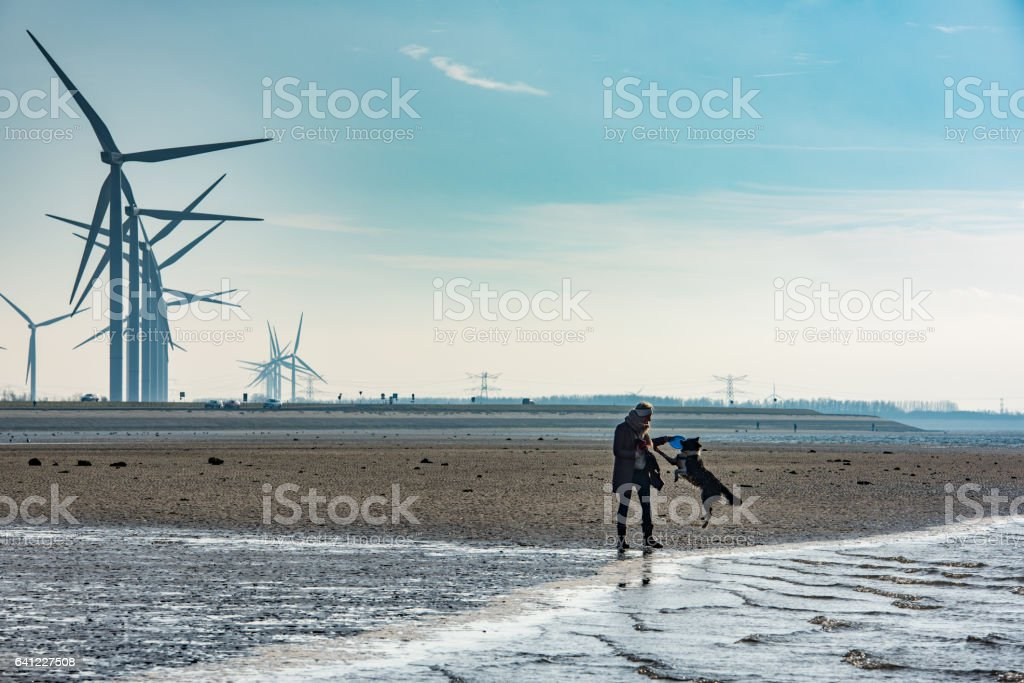 Young lady and her dog walking on a Dutch beach stock photo