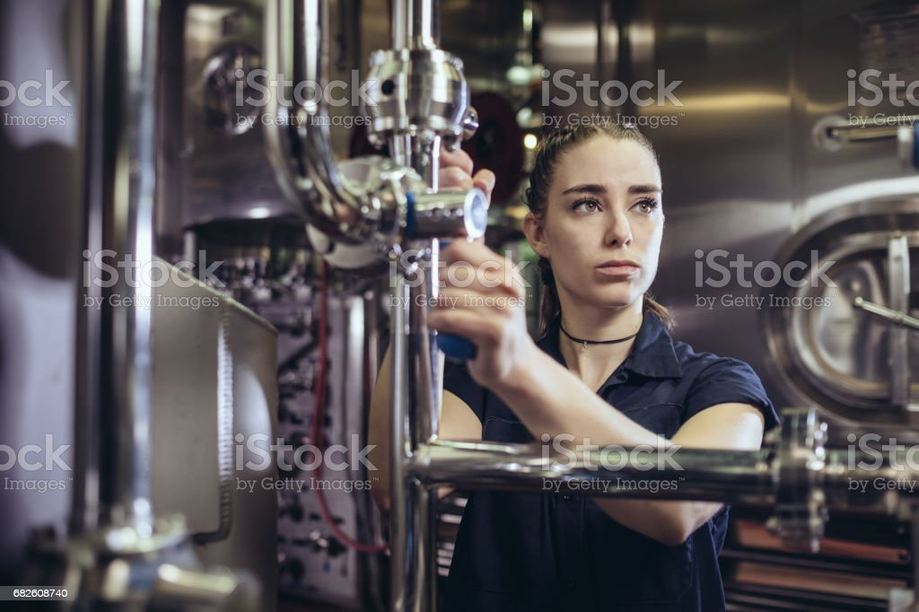 Young Lady Brewer stock photo