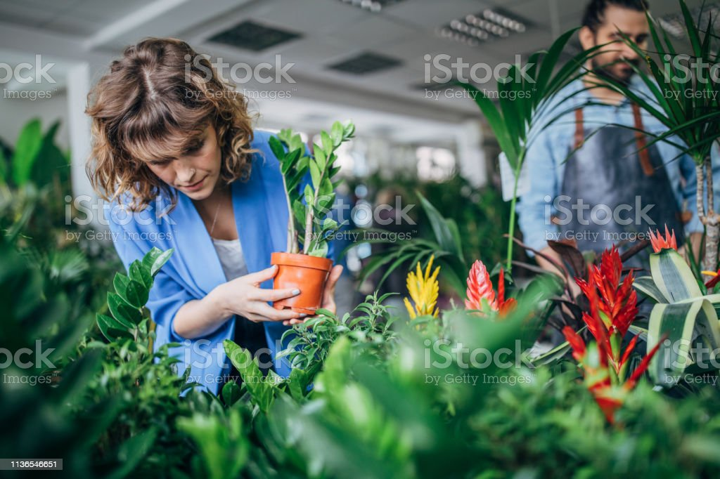 Man and woman at the flower shop, looking at plants.