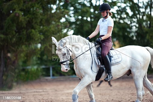 istock Young lady riding a trotting horse practicing at equestrian school 1188220168