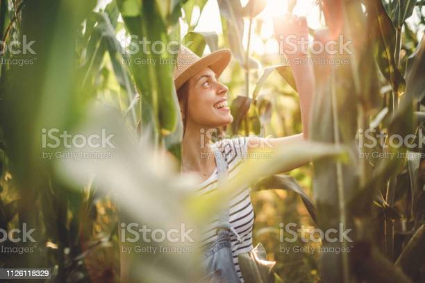 Photo of Young lady with hat in cornfield
