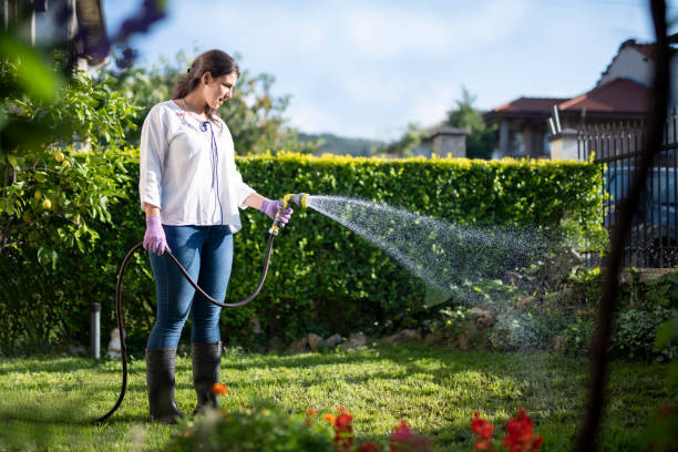 young latino woman watering garden with hose. - garden hose stock pictures, royalty-free photos & images