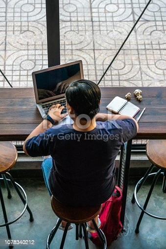 937328186 istock photo Young lesbian working online as a freelancer 1078340212