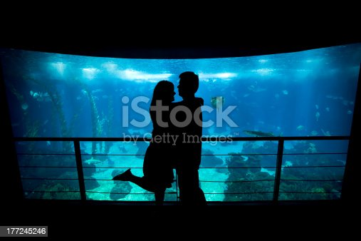 istock Young lovers cuddle in front of an aquarium 177245246