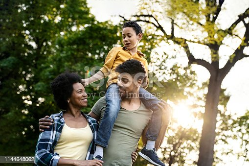 istock Young loving family having fun in the park 1144648062
