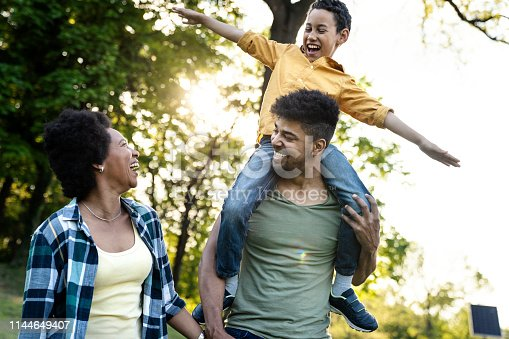 istock Young loving family having fun in the park 1144649407