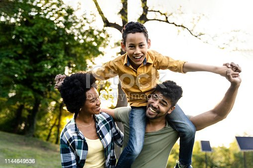 istock Young loving family having fun in the park 1144649536