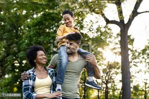 istock Young loving family having fun in the park 1144649584