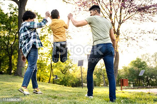 istock Young loving family having fun in the park 1144668267