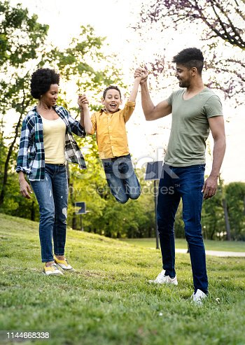 istock Young loving family having fun in the park 1144668338