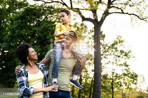 istock Young loving family having fun in the park 1145892596