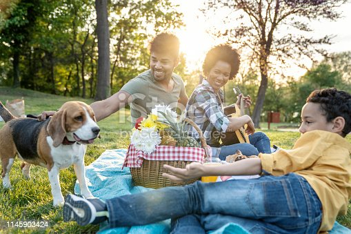 istock Young loving family having fun in the park 1145903424