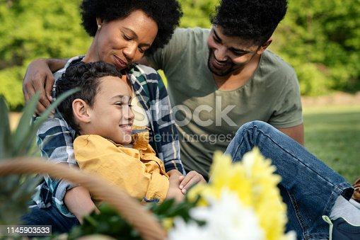 istock Young loving family having fun in the park 1145903533