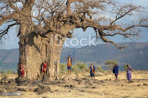 Ngorongoro, Tanzania, 10th September 2019: maasiai warriors in their traditional outfits at a big Baobab tree