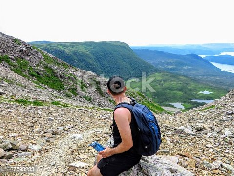 458694311 istock photo A young male hiker admiring the spectacular views from atop Gros Morne Mountain in Gros Morne National Park, Newfoundland and Labrador, Canada.  Below is a valley of green mountains and finger lakes. 1127593233