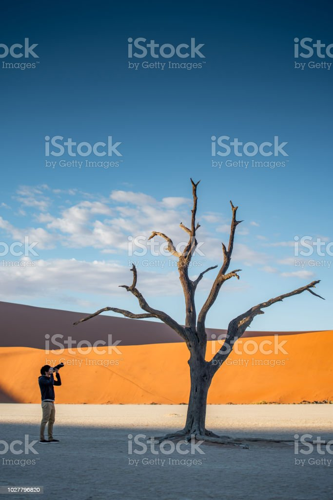 Young male photographer and traveler taking photo of dead tree in deadvlei (Sossusvlei), Namibia stock photo