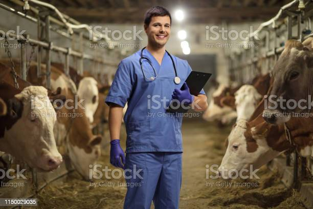 Young male veterinarian with a clipboard on a cow farm picture id1150029035?b=1&k=6&m=1150029035&s=612x612&h=kdr4fmizfp09viuddb3m0pvh8juqrvsful7it9phmua=
