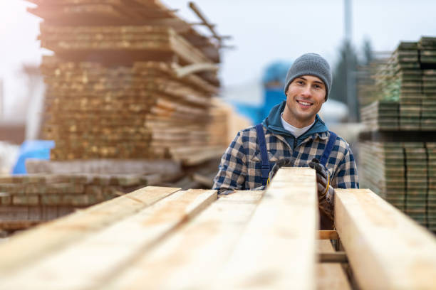 Young male worker in timber warehouse stock photo