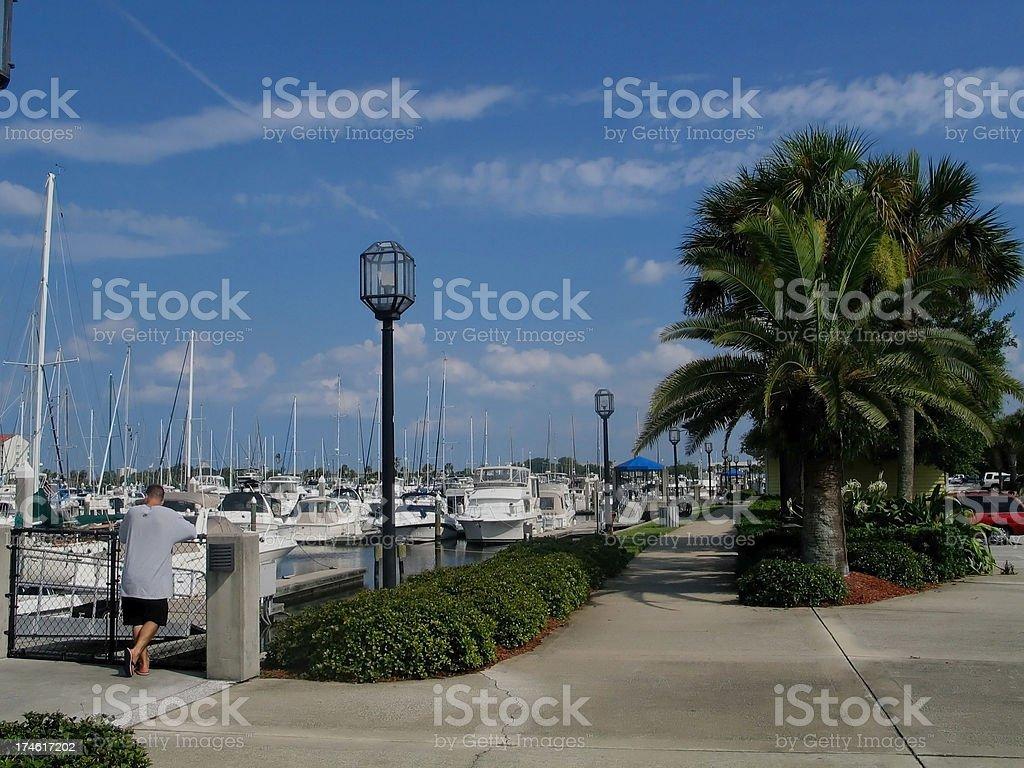 Young Man Admiring  Boats At Daytona Beach Marina royalty-free stock photo