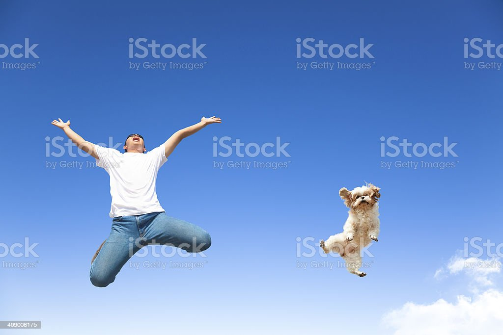 young man and dog jumping in the sky stock photo