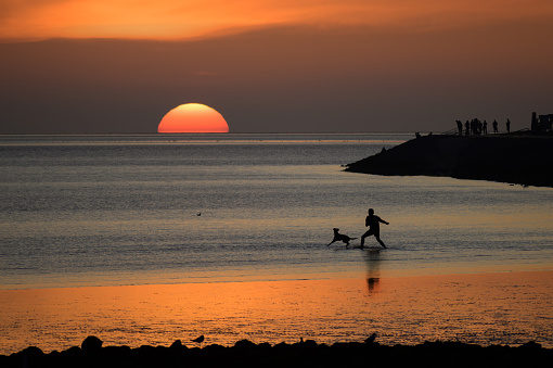 Young man and his dog as silhouettes are playing in the sunset on the beach of the north sea at low tide in Germany, copy space