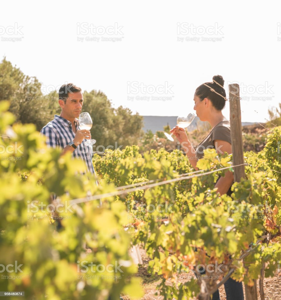 A young man and woman in a vineyard stock photo