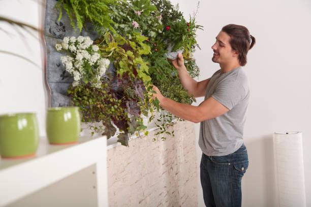 Junger Mann besucht seinen vertikalen Garten zu Hause – Foto