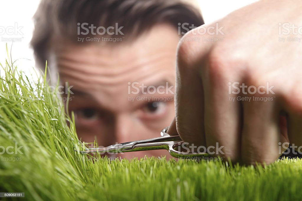 Young man cuts English lawn stock photo