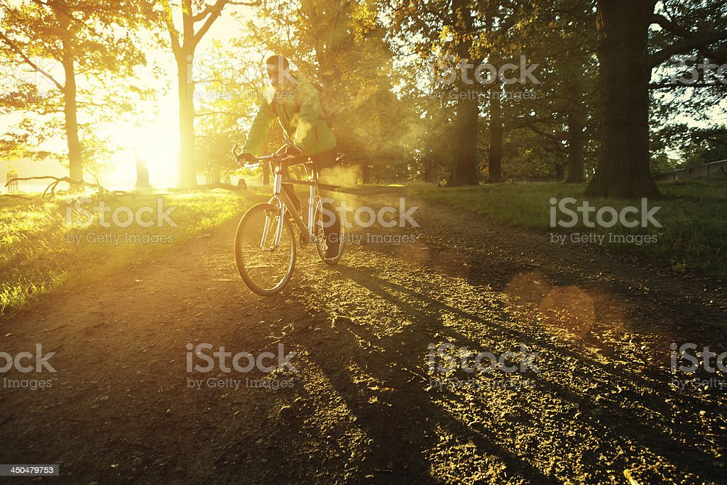 young man cycling in Richmond Park, London royalty-free stock photo