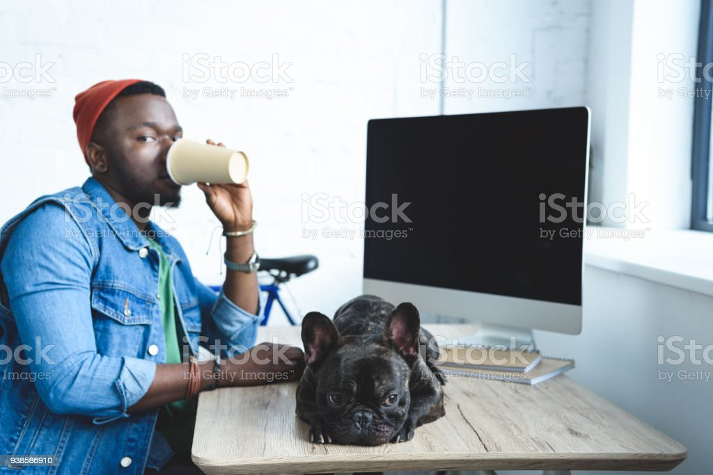 Young man drinking coffee by French bulldog lying on computer table stock photo