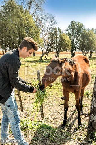 Young man sympathizes with a horse