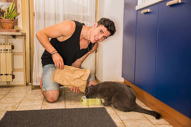 junger mann, die einen futternapf mit trockenen speisen für katzen - katzenschrank stock-fotos und bilder