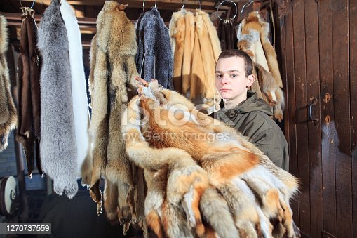 A young man hangs up the fur after treatment