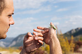 Handsome young man holding a praying mantis while hiking the mountain range.