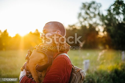 Young Hiking Man Holding Vizsla Dog on Sunlit Meadow, Alt-Lübars, Berlin, Germany