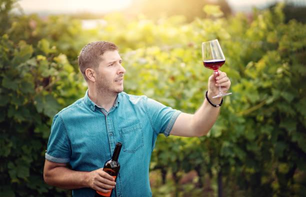 Young man holding wineglass and wine bottle at vineyard. Winemaker enjoying wine tasting at sunset stock photo
