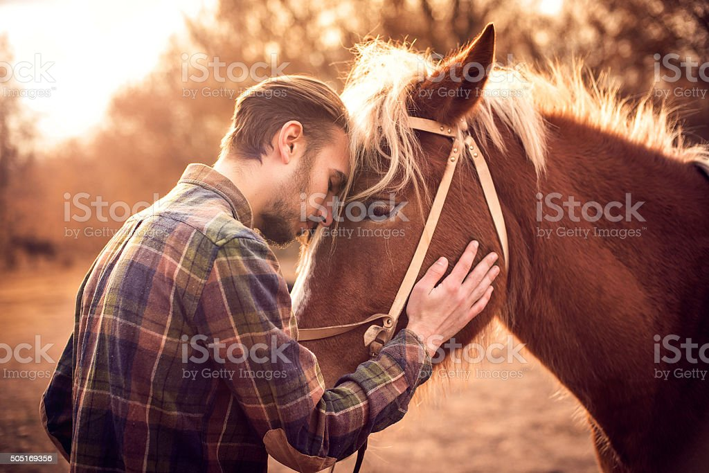Young man hugs a horse. Autumn outdoors scene stock photo