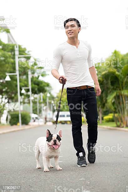 Young man in casual attire walking his dog on the street picture id179026217?b=1&k=6&m=179026217&s=612x612&h=eetnvcsdncaio5n6xhjkza1nr7u6shzqvlj p6ehl m=