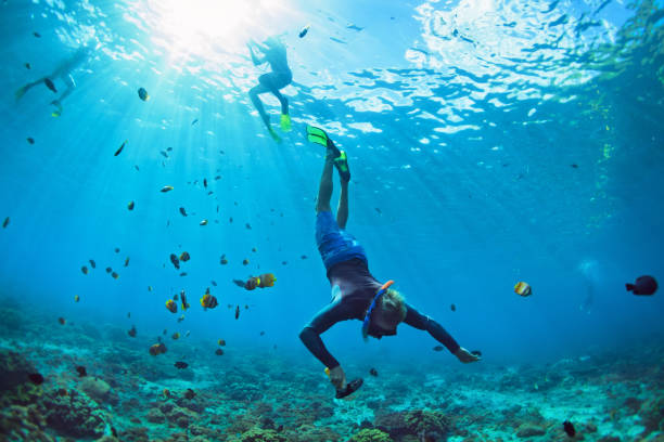 young man in snorkelling mask dive underwater - underwater diving stock photos and pictures