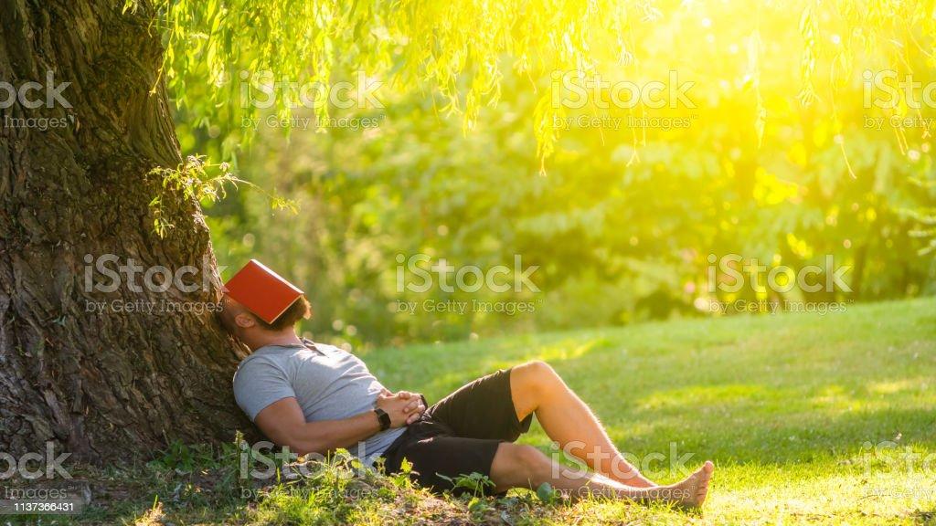 Een jonge man is slapen onder de boom (huilende wilg) met het boek op zijn gezicht - Royalty-free Afgeleid Stockfoto