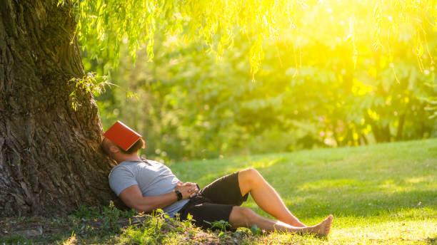 un jeune homme dort sous l'arbre (saule pleurant) avec le livre sur son visage - faire un somme photos et images de collection