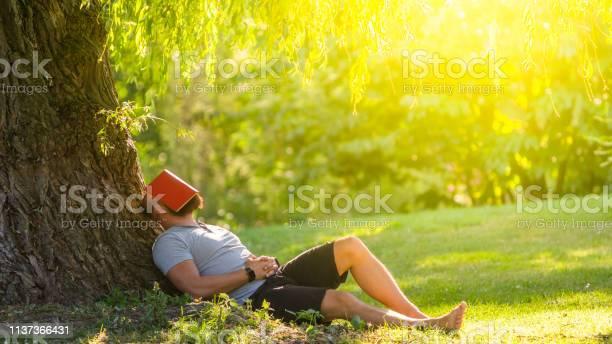 Een Jonge Man Is Slapen Onder De Boom Met Het Boek Op Zijn Gezicht Stockfoto en meer beelden van Afgeleid