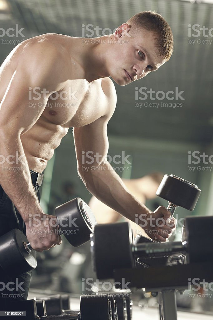 Young Man Lifting  Dumbbells in the Gym royalty-free stock photo