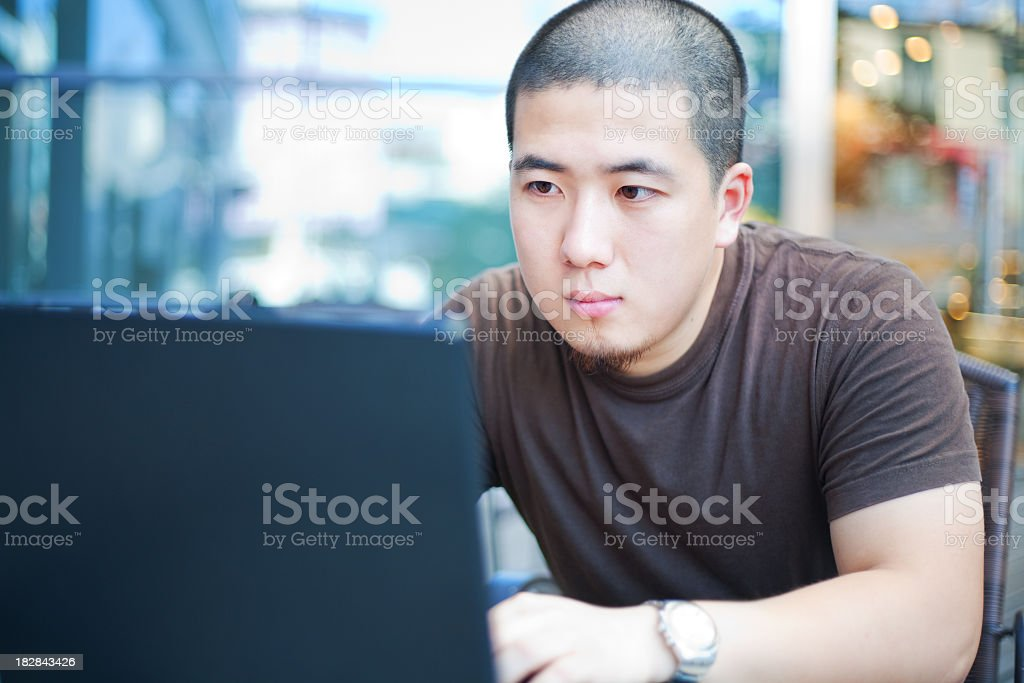 Young man looking intently at his laptop in a cafe stock photo