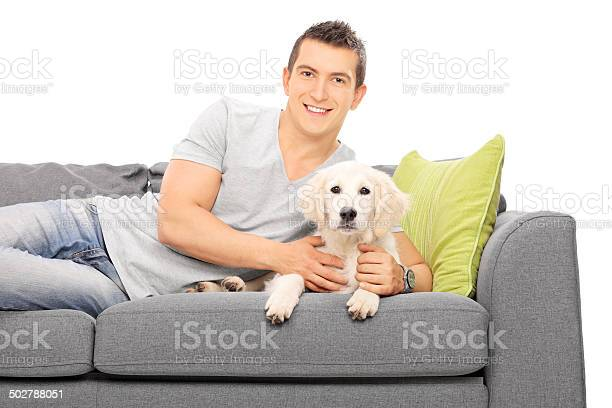 Young man lying on couch with a puppy picture id502788051?b=1&k=6&m=502788051&s=612x612&h=ls gi7tlp9r bjnf9bw60zl fccdwpppmuizbnp1c6i=