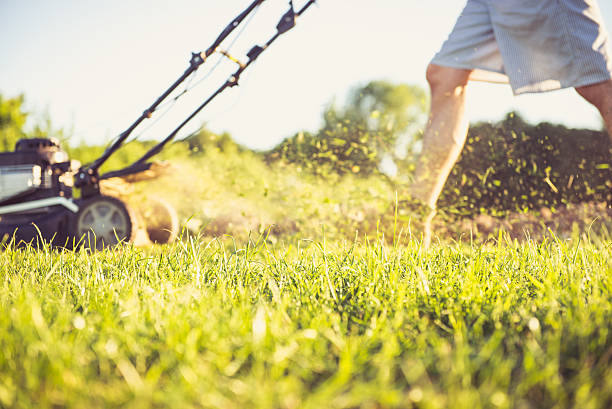 Young man mowing the grass Photo of a young man mowing the grass during the beautiful evening. mowing stock pictures, royalty-free photos & images