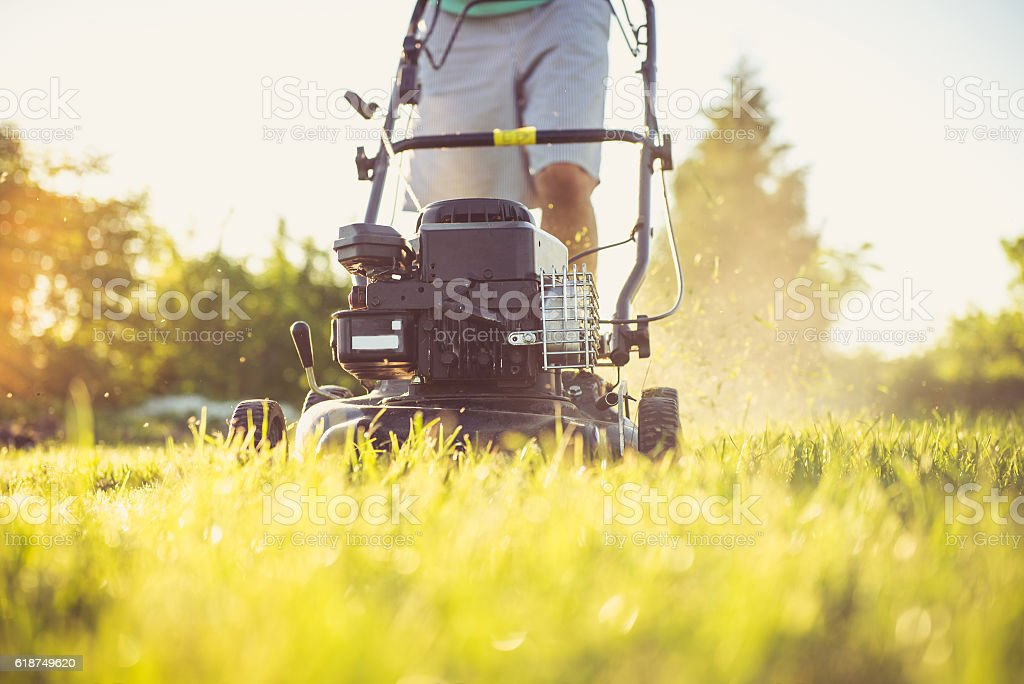 Young man mowing the grass stock photo
