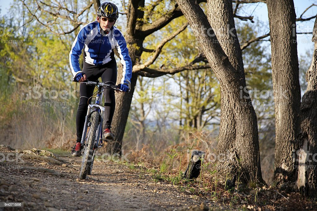 Young man on his mountain bike cycling in the woods royalty-free stock photo